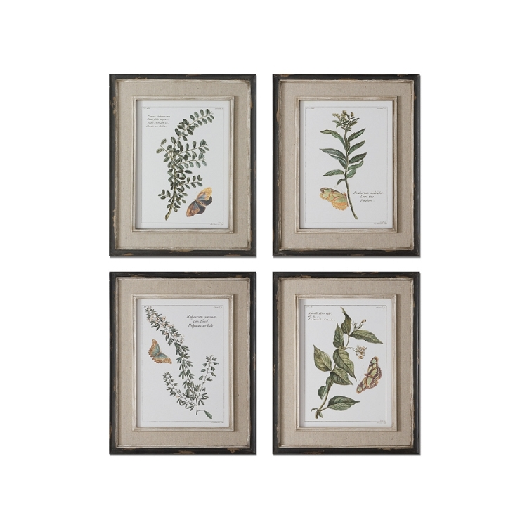 butterfly plants set of four wall art prints 51079. Black Bedroom Furniture Sets. Home Design Ideas